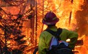 NC Extension Agents Attend Timely Workshop on Wildland Fire