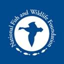 The National Fish and Wildlife Foundation Establishes Longleaf Stewardship Fund