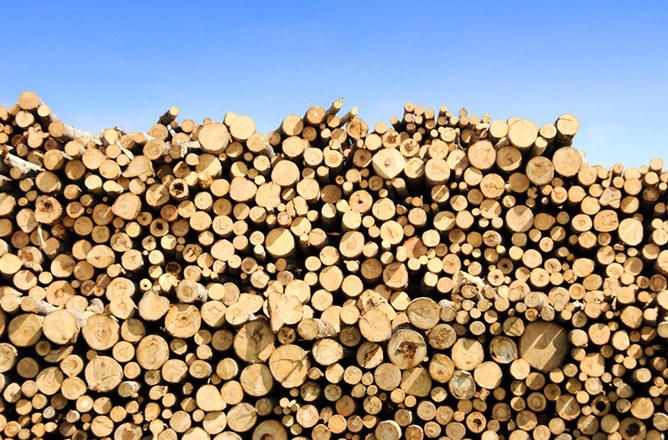 Timber Tax Resources Available