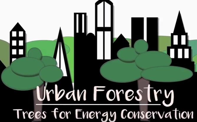 Urban Forestry Video Release: Tree Selection & Placement